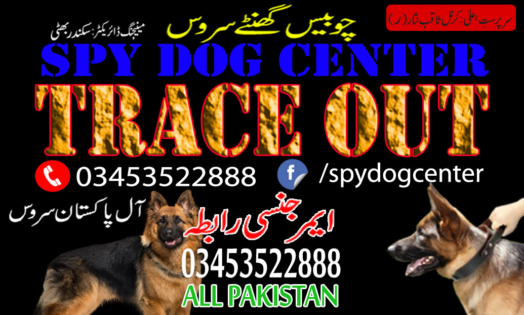 Best Service Of Official Trace Out Army Dog Center