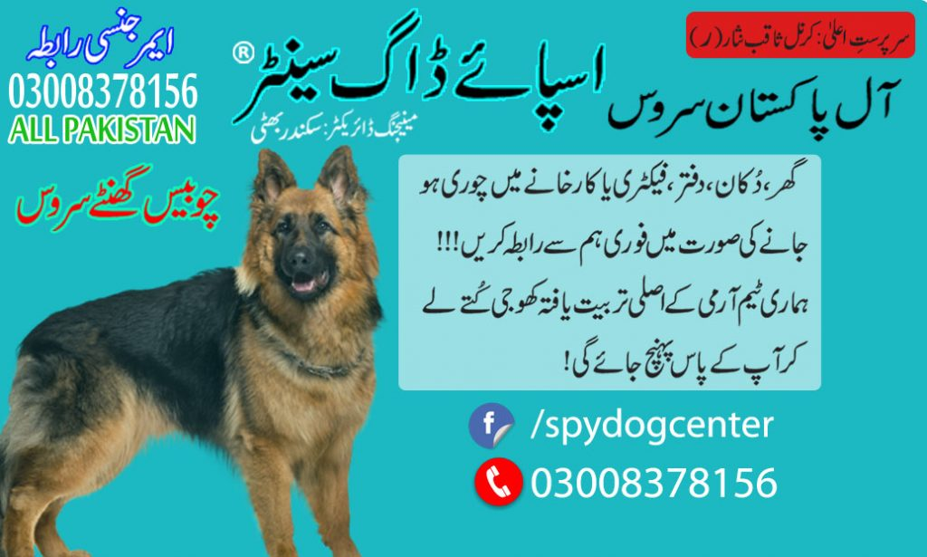 Armi Dog Center Okara