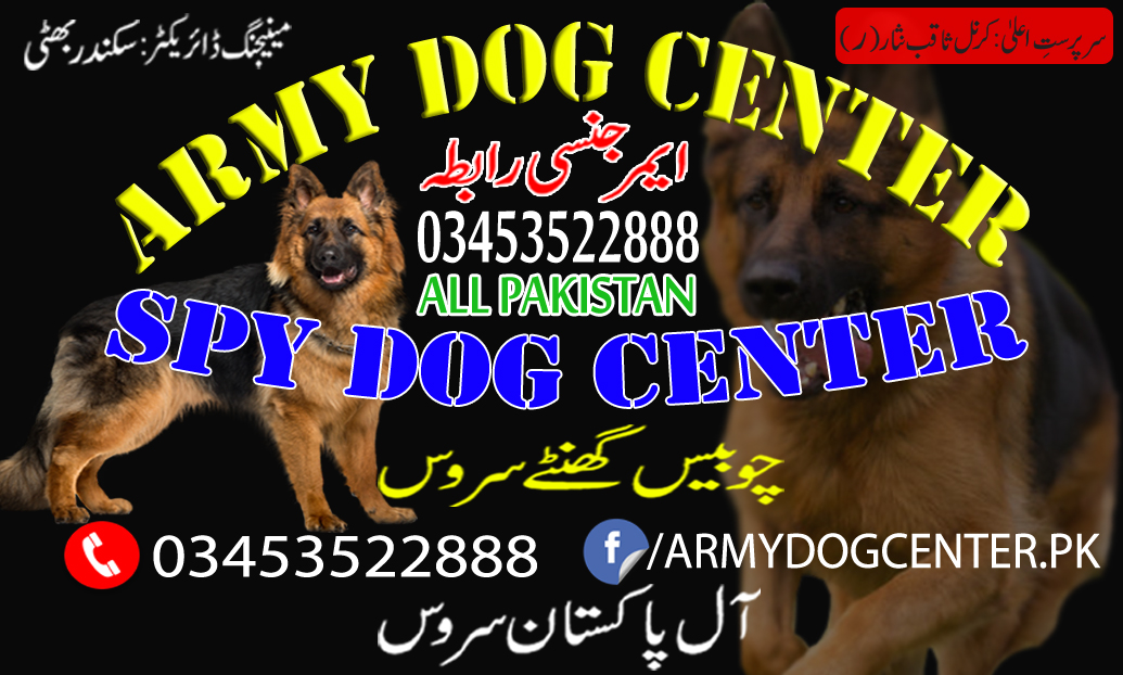 The History Of Police Dogs In Army Dog Center Lahore