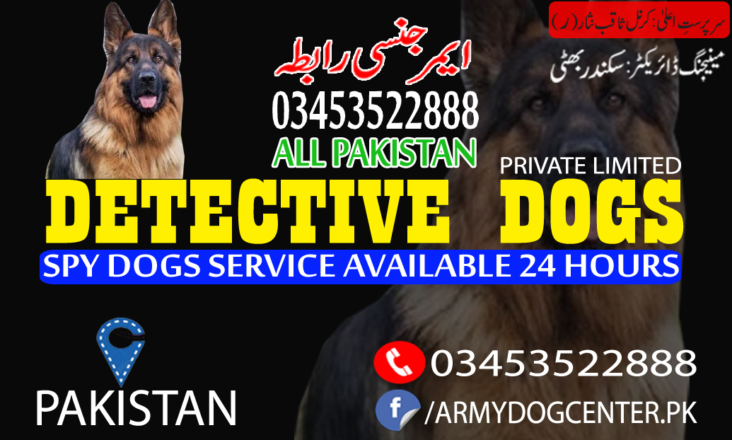 Dogs Are Great Disease Detectors Army Dog Center Multan