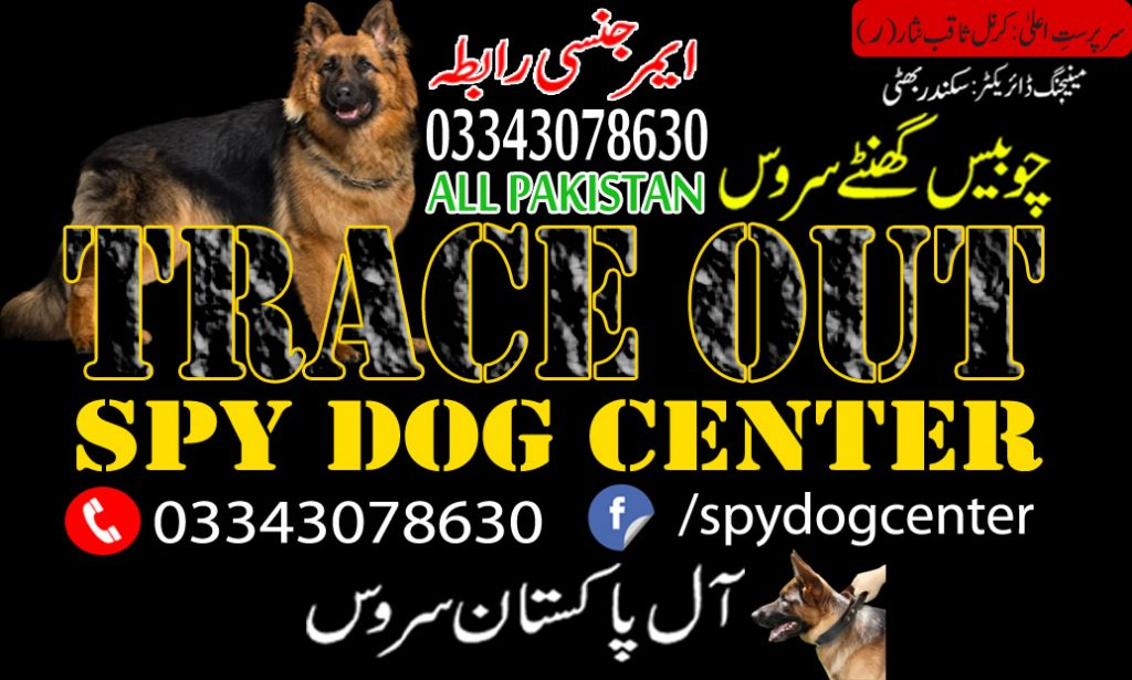 Trace Out Dog Center
