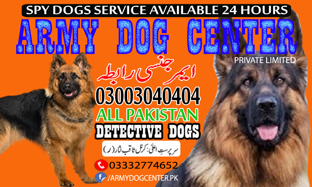 Army Dog Center Service Available In Over All Pakistan