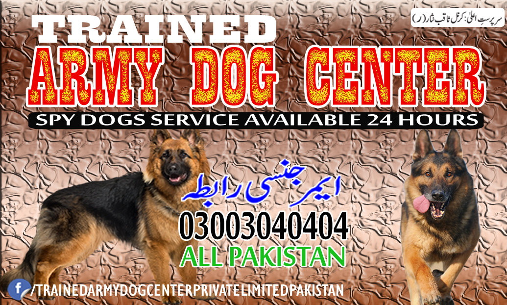Army Dog Center Kohat for Health Tips About Dogs
