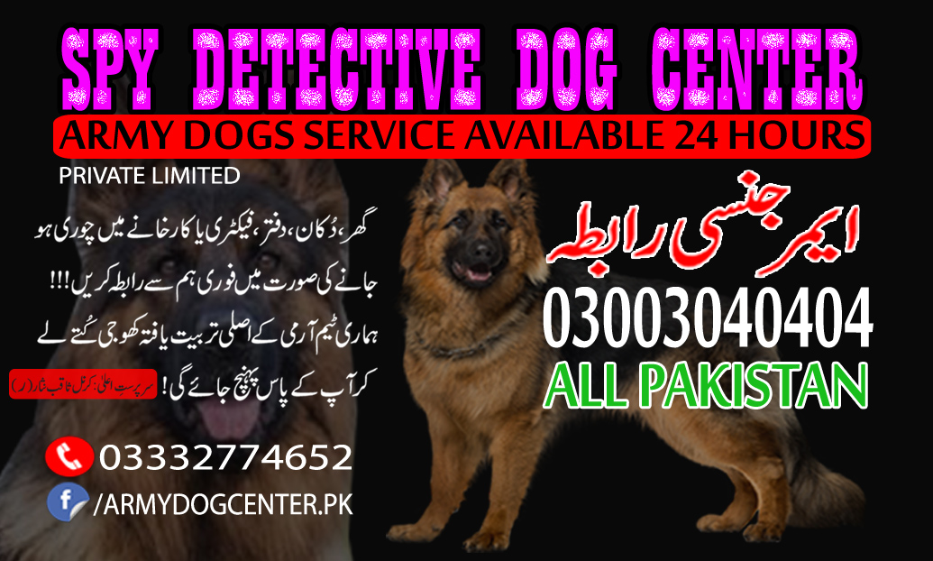 Alipur Dog Center Best Service Original Detective Dogs