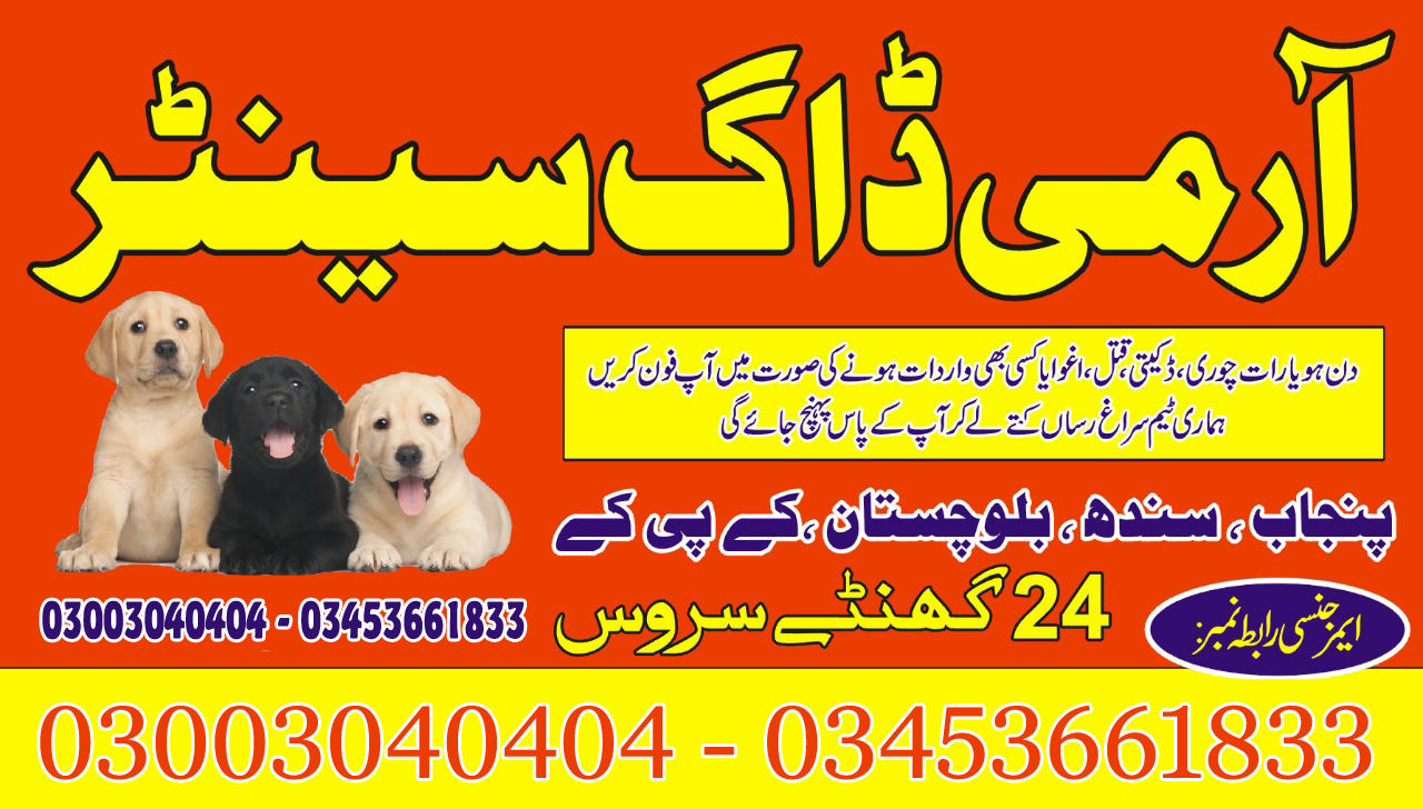 Army Dog Center 24 Hours Emergency Contact 03003040404