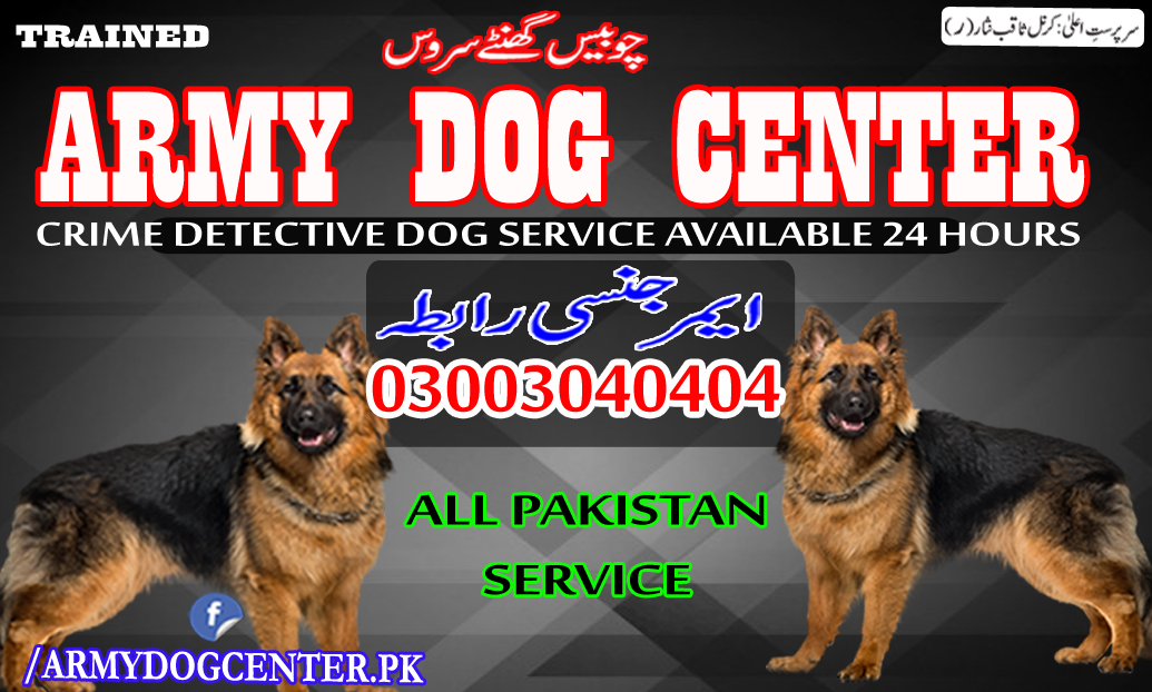 Kasur Army Dog Center 03003040404 Emergency Call All Pakistan