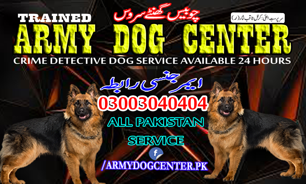 Rahim Yar Khan Army Dog Center 03003040404 Emergency Call