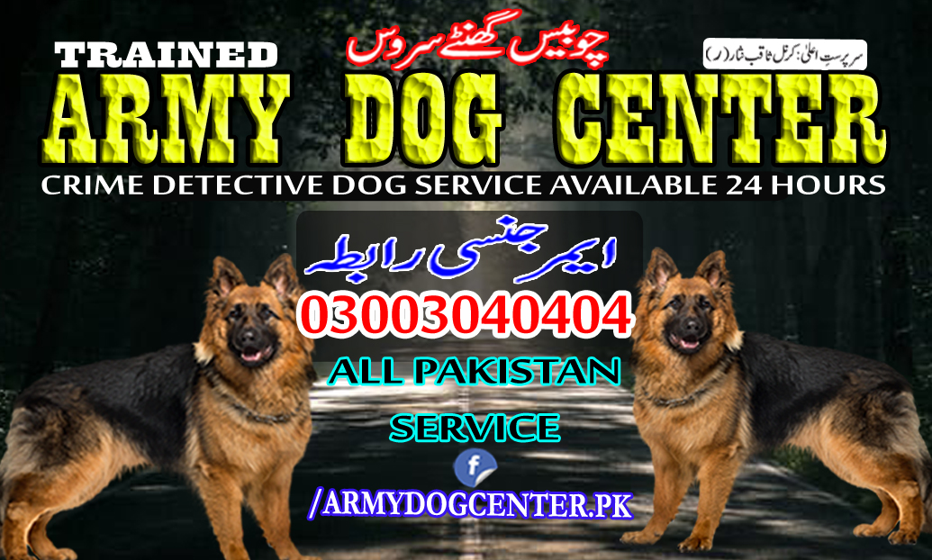 sargodha army dog center