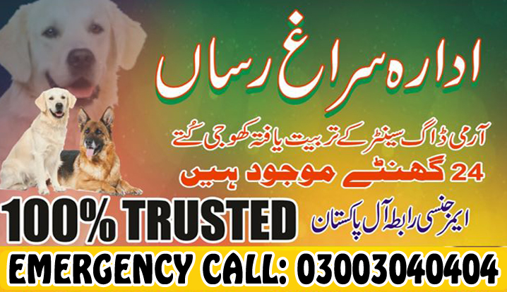 Army Dog Center Pakistan First Real Dog Center 03003040404