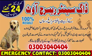 Army Dog Center Trained Army Dogs Emergency Call 03003040404