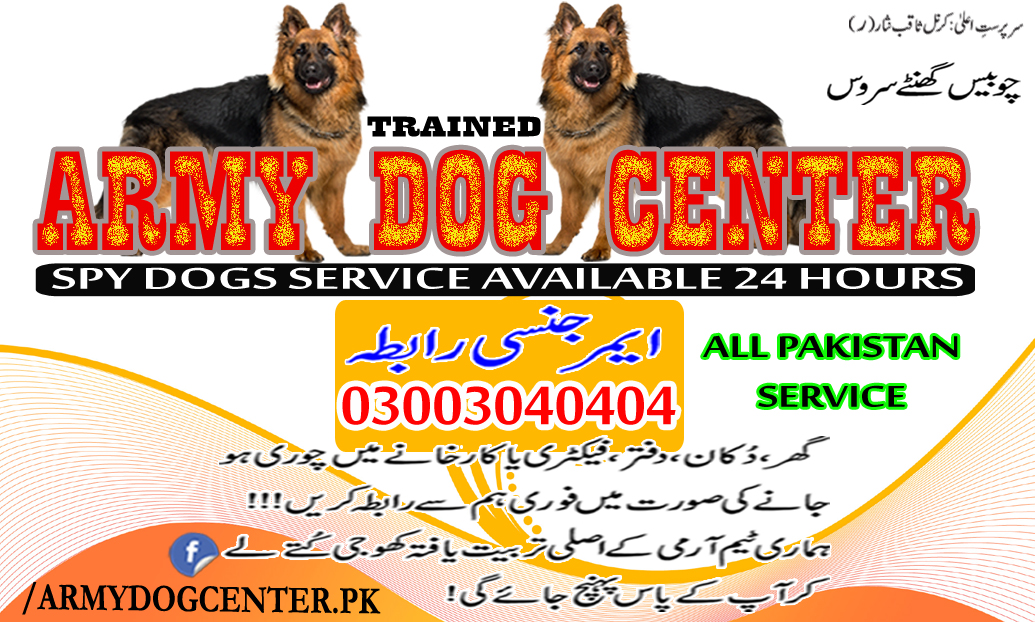 Army Dog Center Emergency Call 03003040404 Trusted