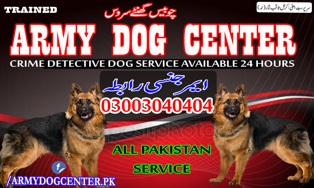 Army Dog Center Emergency Contact 03003040404 Service 24 Hours