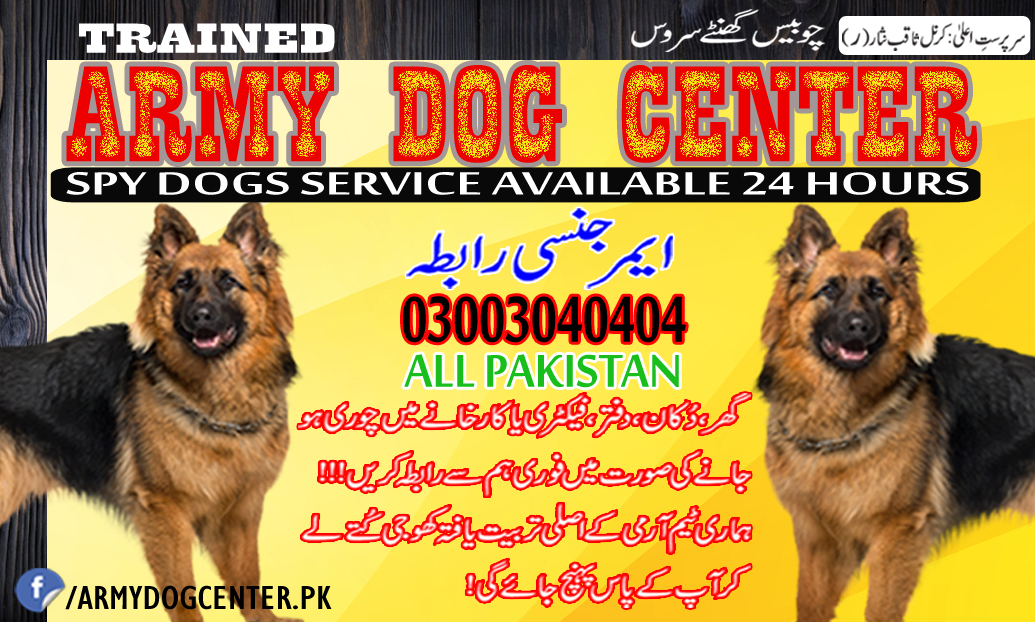 Army Dog Centre Emergency Contact 03003040404