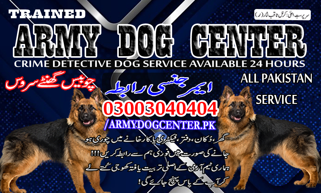 Attock Dog Center 03003040404 Emergency Call All Pakistan