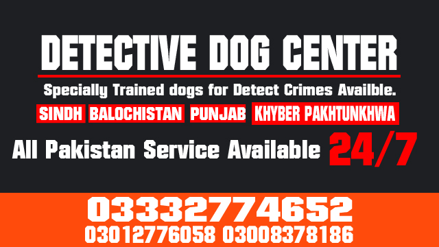 Trained Army Dog Center Emergency Contact 03003040404