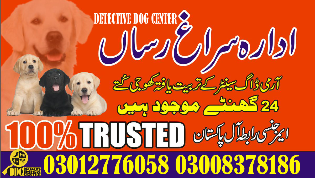Army Dog Center 03003040404 Emergency Call All Pakistan