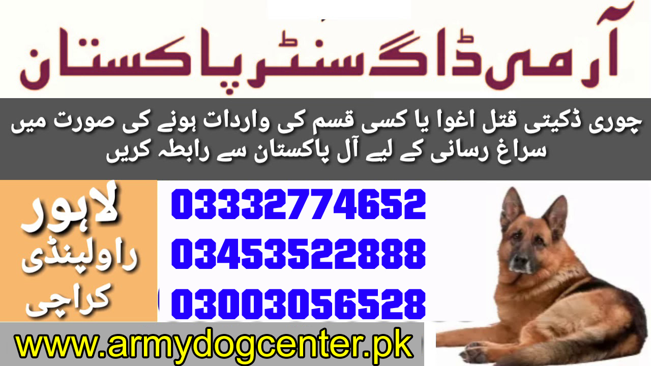 Lahore Army Dog Center 03343078630 Emergency Call All Pakistan