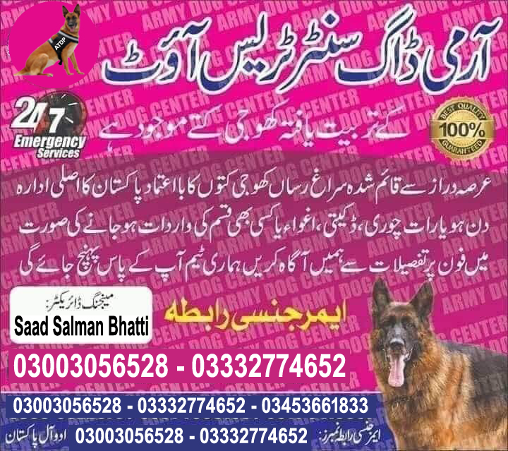 Army Dog Center Service All Pakistan Emergency Call 03003056528