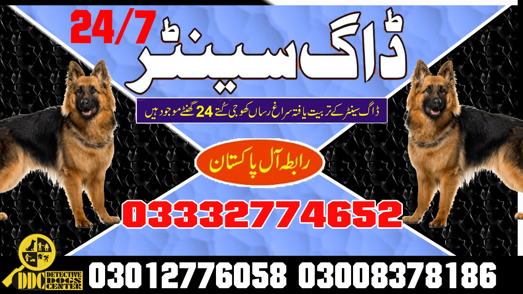 Army Dog Center 03003040404 All Over Pakistan Service