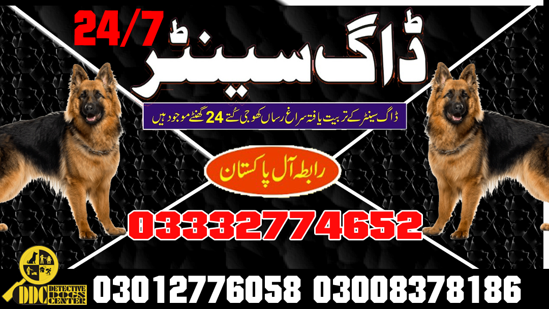 Army Dog Center 03003040404 Service All Pakistan Emergency Call