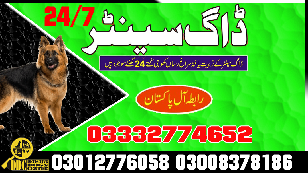 Army Dog Center Emergency Call 03008378186 Service All Pakistan