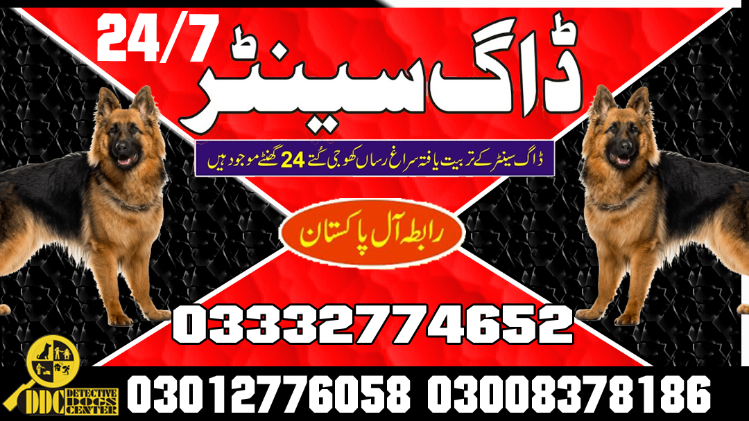 Army Dog Center 03003040404 Emergency All Over Pakistan Service