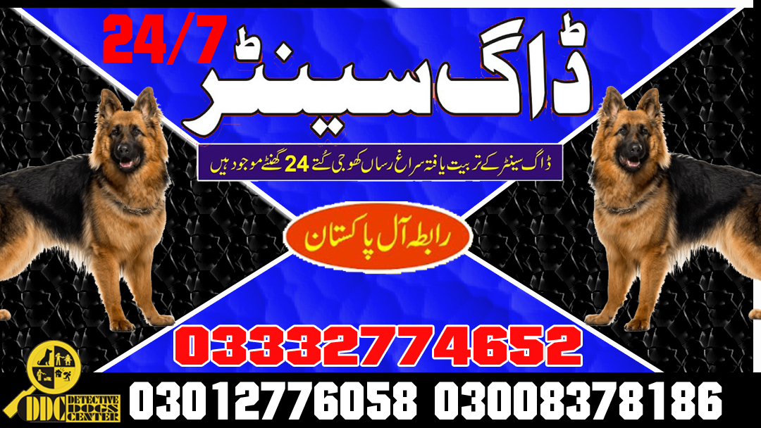 Army Dog Center Emergency Call 03003056528 Service All Pakistan