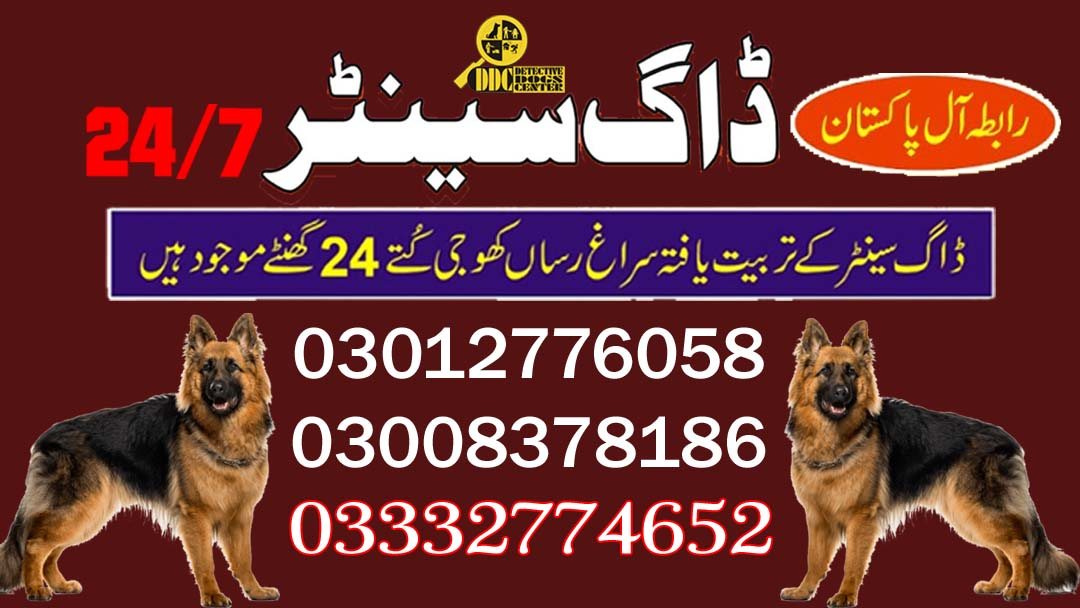 Army Dog Center 03003040404 Service Available In All Sindh