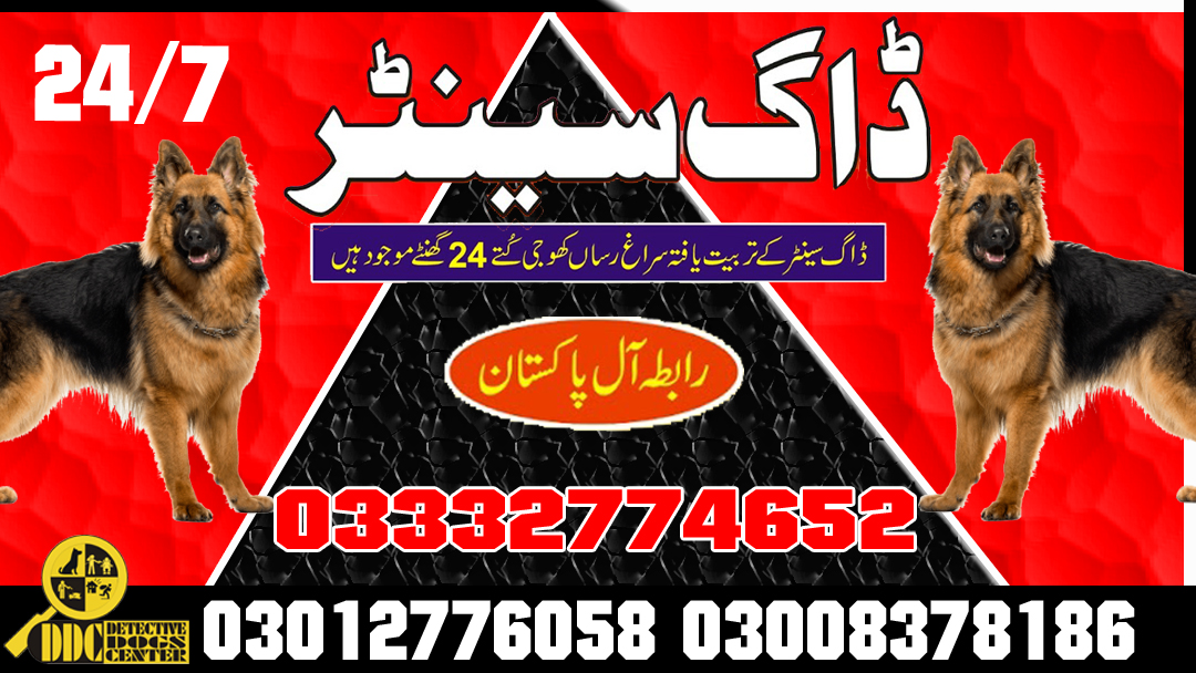 Army Dog Center 03003056528 Emergency Service All Pakistan