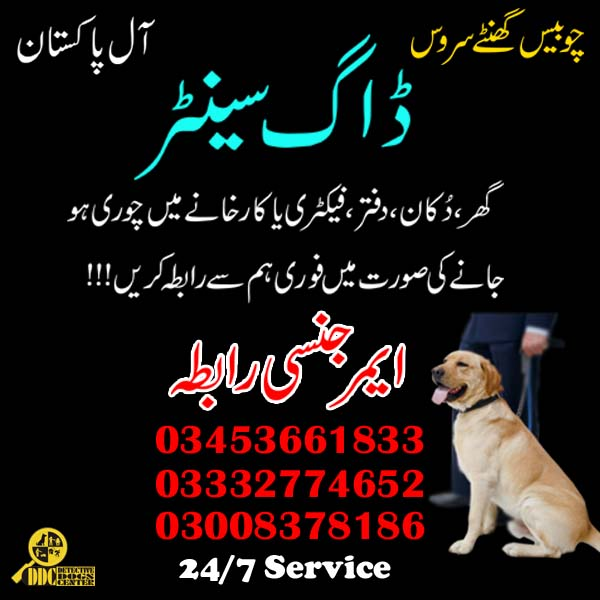 Army Dog Center 03453661833 All Pakistan Service 24 Hours