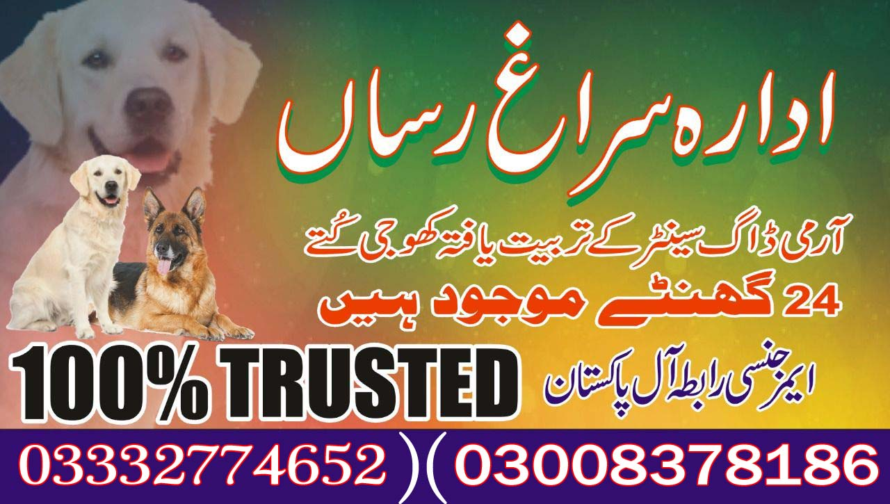Army Dog Center 03003040404 Successful Case In Pakistan