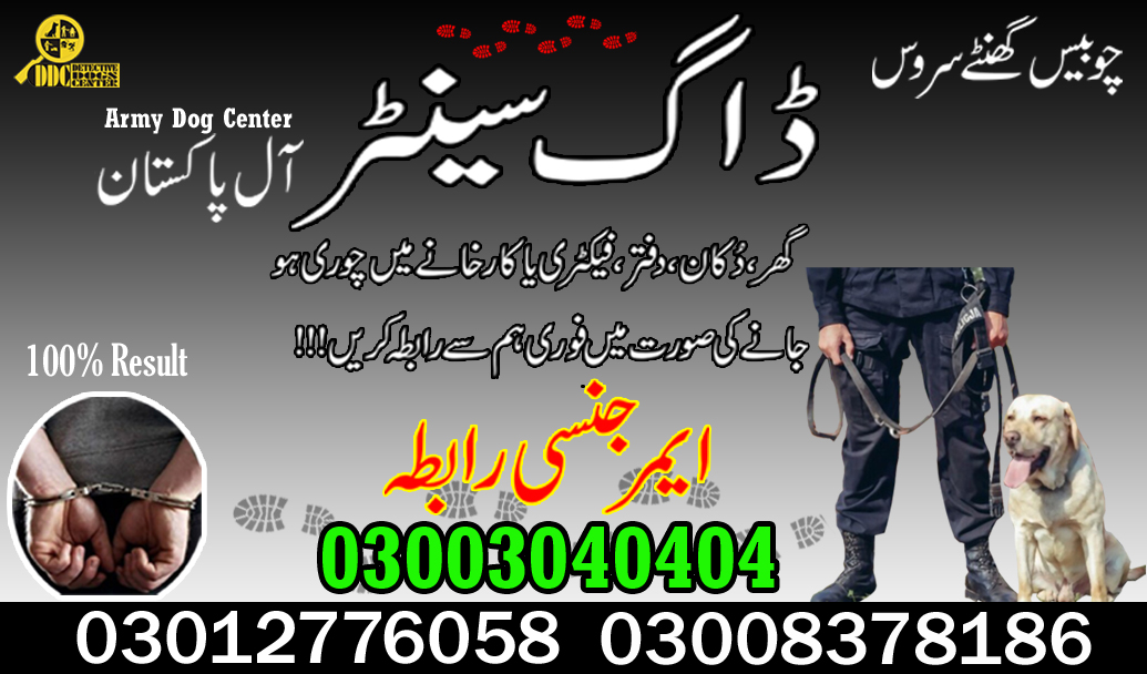 Army Dog Center 03003040404 And Dog Training Center Quetta