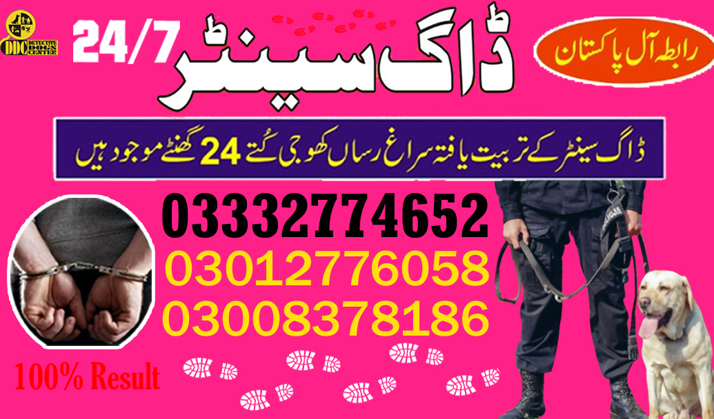 Army Dog Center Contact 03003040404 Emergency All Pakistan