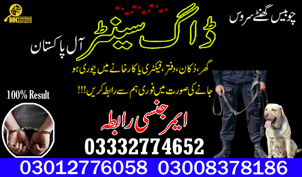 Army Dog Center 03008378186 Service Available All Pakistan