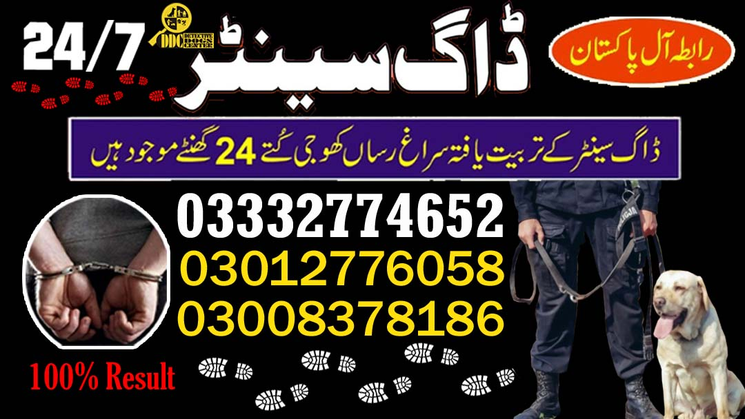 Army Dog Center 03003040404 We Are Provide Best Service
