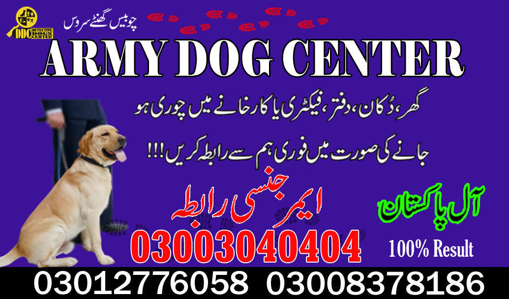Army Dog Center 02 Lahore 03003040404 Get Emergency Contact