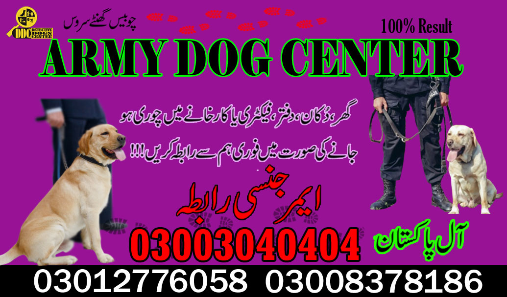 Army Dog Center 03003040404 Pakistan Successful Cases