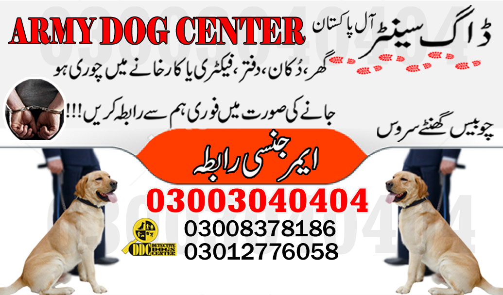 Army Dog Center Trace Out 03003040404 Emergency Near By Location