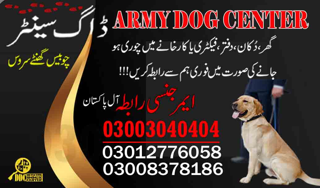 Army Dog Center Team Contact 03003040404 Service All Pakistan